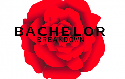 Bachelor Breakdown: the finale