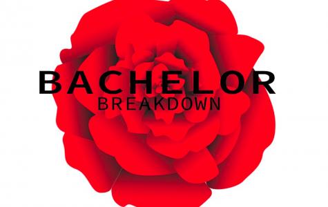 Bachelor Breakdown: Episode 8