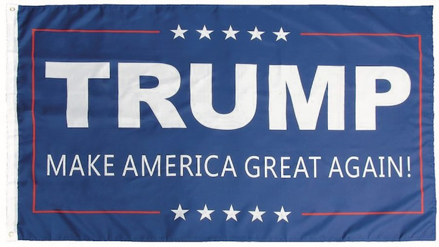 A+video+posted+to+the+UW-Eau+Claire+College+Republicans+Facebook+page+showed+an+unidentified+individual+stealing+a+President+Donald+Trump+campaign+flag+and+throwing+it+into+the+Little+Niagara.