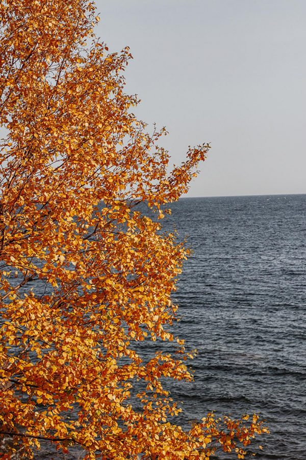 Colors of fall brace against the blue of Lake Superior.