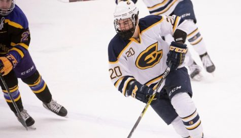 UW-Eau Claire men's hockey earns two wins against UW-Stout