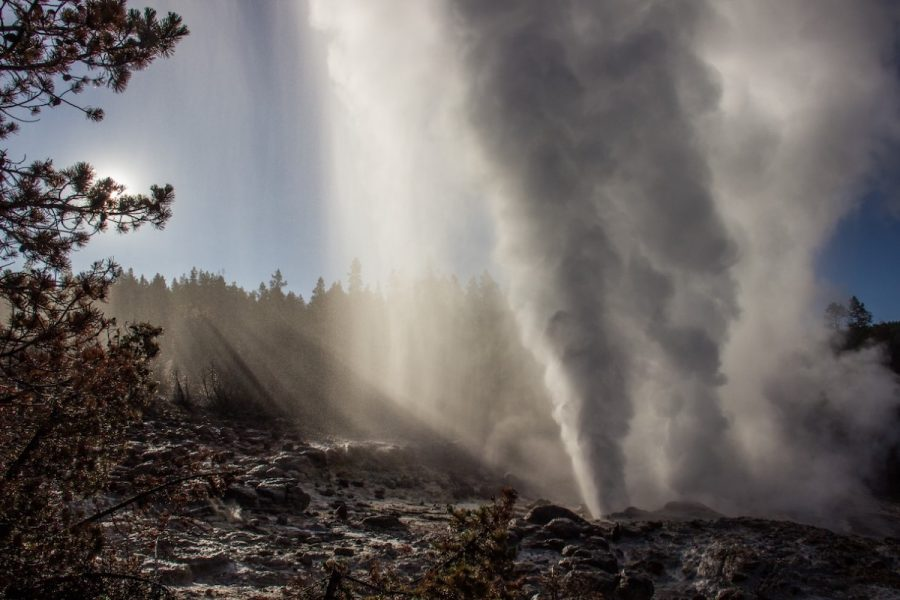 "Steamboat Geyser is the world's tallest active geyser and after it erupts, ""vigorous steaming"" occurs for several hours, Mara Reed, a UW-Eau Claire alum, said."